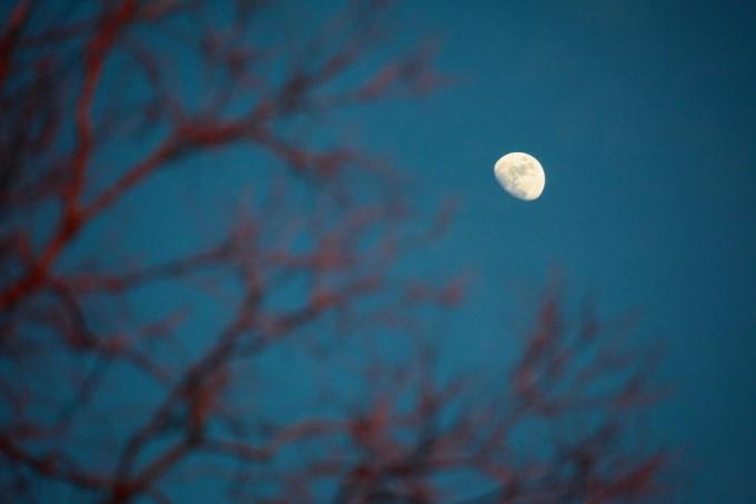Half-Moon II