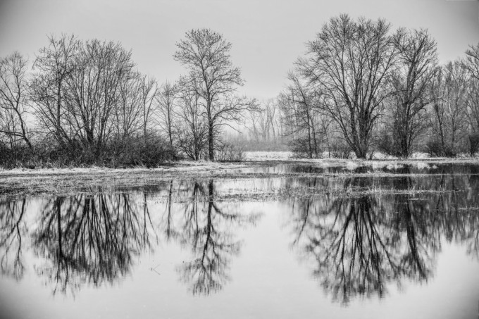Snowy Winter Lagoon