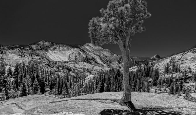 Yosemite National Park…