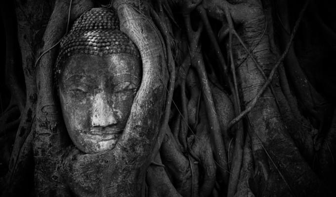 Ayutthaya…
