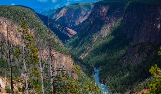 Yellowstone NP…